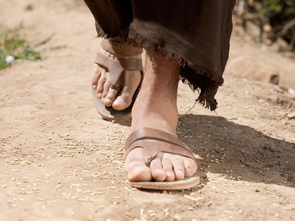 Uzdrowienie teściowej Piotra (Mt. 8:14-17)