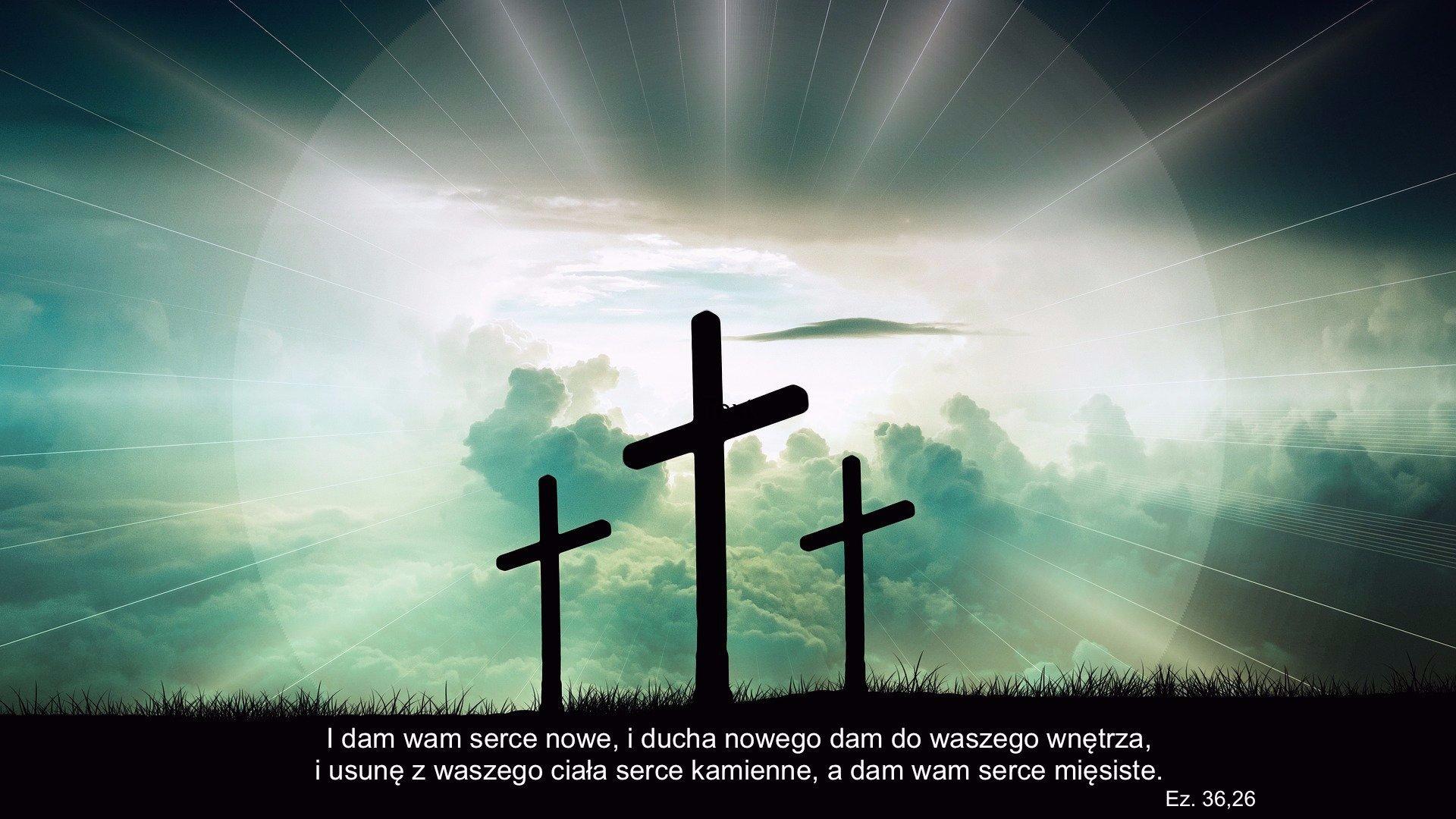 Prawdziwe upamiętanie i regeneracja (Ps. 51:12-21)