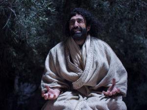 Jezus ogród Getsemane